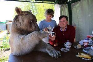 Stepan의 아침식사 출처 - baidu