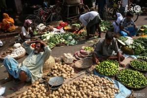 인도의 야채시장