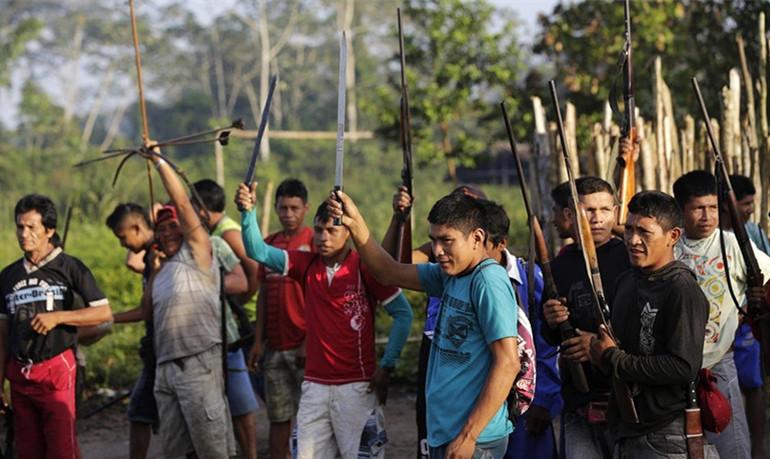 아마존 열대우림 강도들