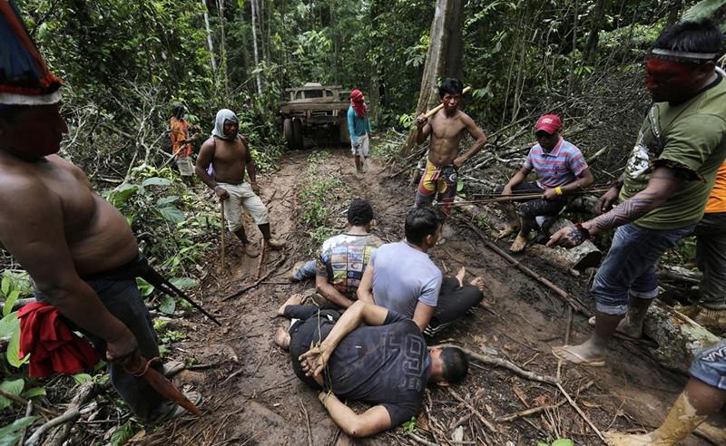 아마존 열대우림 강도