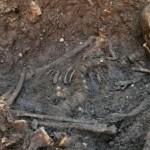 땅을 파내자 도끼와 함께 해골이 발견되었다