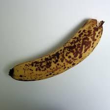 ▲ 사진처럼 검은 반점이 나타난 후숙바나나가 노란 바나나에 비해 당도가 높고 면역력이 뛰어나다