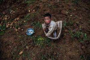 밭에서 놀고 있는 아기
