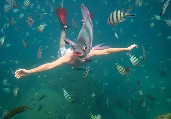 물고기 인간